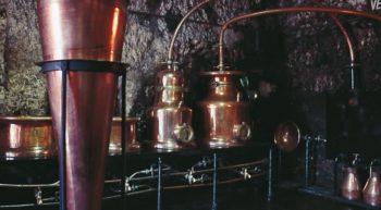 (35)distillerie-fraise-or-chissay-en-touraine©CDT41