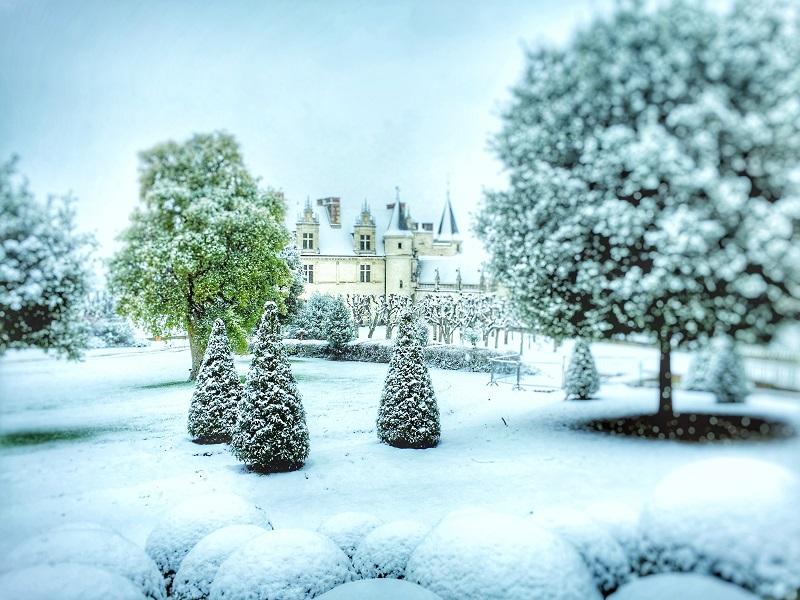 Visite de noël au château Royal d'Amboise à AMBOISE ©