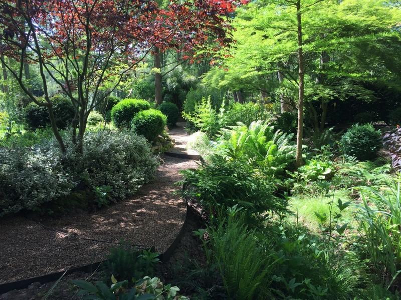Arboretum de la Chavannerie à LA FERTE-SAINT-AUBIN ©