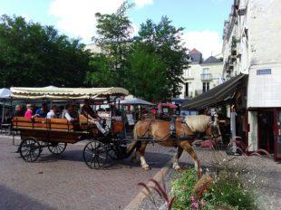 Les attelages de Villandry – Carriage rides à VILLANDRY - 5  ©