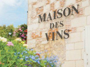 Wine house of Bourgueil à BOURGUEIL - 4  ©