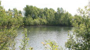 Plan-d-eau-des-tenieres-5—fdc37