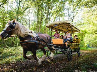 Les attelages de Villandry – Carriage rides à VILLANDRY - 2  ©