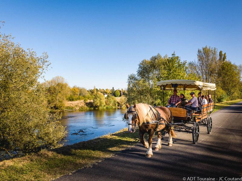 Les attelages de Villandry – Carriage rides à VILLANDRY ©
