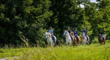 balade-equestre-boucle-credit-darrault
