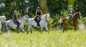 balade-equestre-credit-darrault