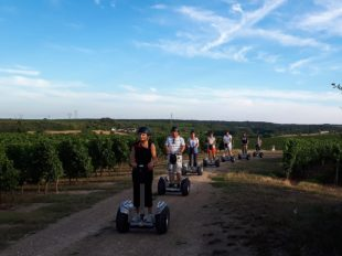 Gyroway – Cross-country gyropod strolls and electric scooter à LANGEAIS - 8  ©