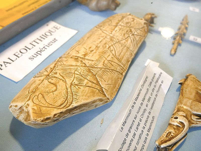 Museum of Savignéen à SAVIGNE-SUR-LATHAN ©