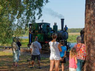 The steam train of Rillé à RILLE - 4  ©