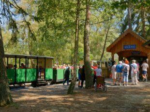 The steam train of Rillé à RILLE - 2  ©
