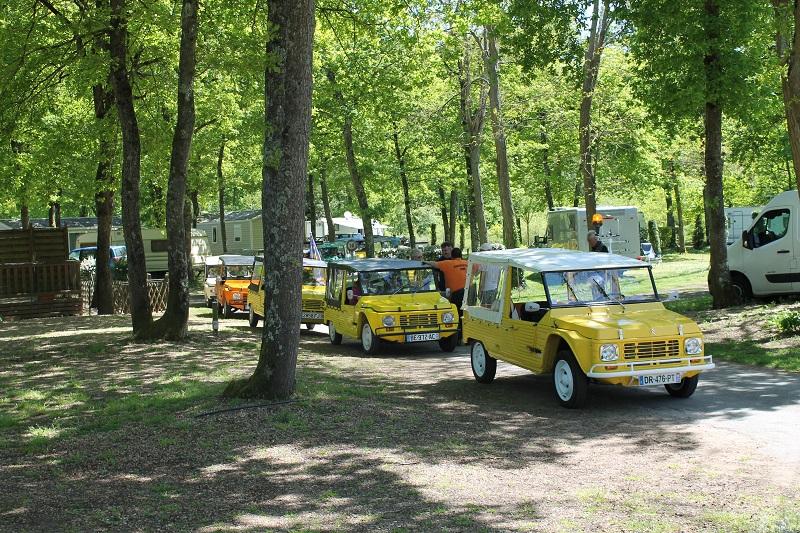 Camping Les Acacias à LA VILLE-AUX-DAMES - 10  ©
