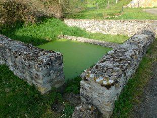 Sentier de l'eau à la pierre à CHAVIN - 3  © YMB