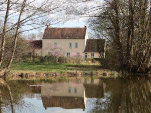 Gite du canal de Briare Les Fichus à OUZOUER-SUR-TREZEE - 2  © Réjane Odry