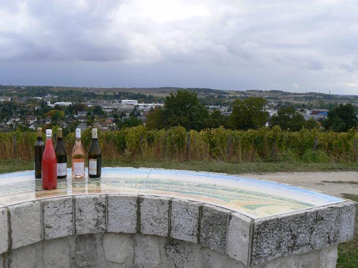 Vignoble de la Pente des Coutis à VENDOME © CDT41-emasson