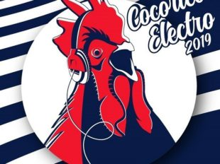 Cocorico Electro à LA FERTE-SAINT-AUBIN - 9  © cocorico