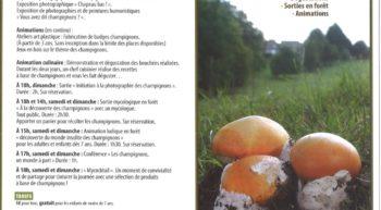 6-7 oct weekend champignons maison de la foret