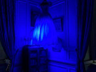 Les Fantômes de la Ferté à LA FERTE-SAINT-AUBIN - 3  © Château de la Ferté Saint Aubin, Tous au Château