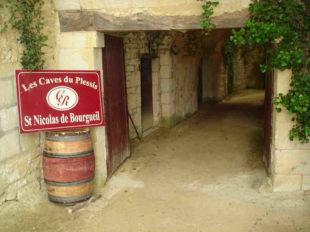 Les Caves du Plessis à SAINT-NICOLAS-DE-BOURGUEIL - 2  ©  Les Caves du Plessis