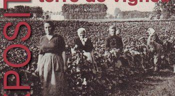 Affiche exposition Meung autrefois : terre de vignes