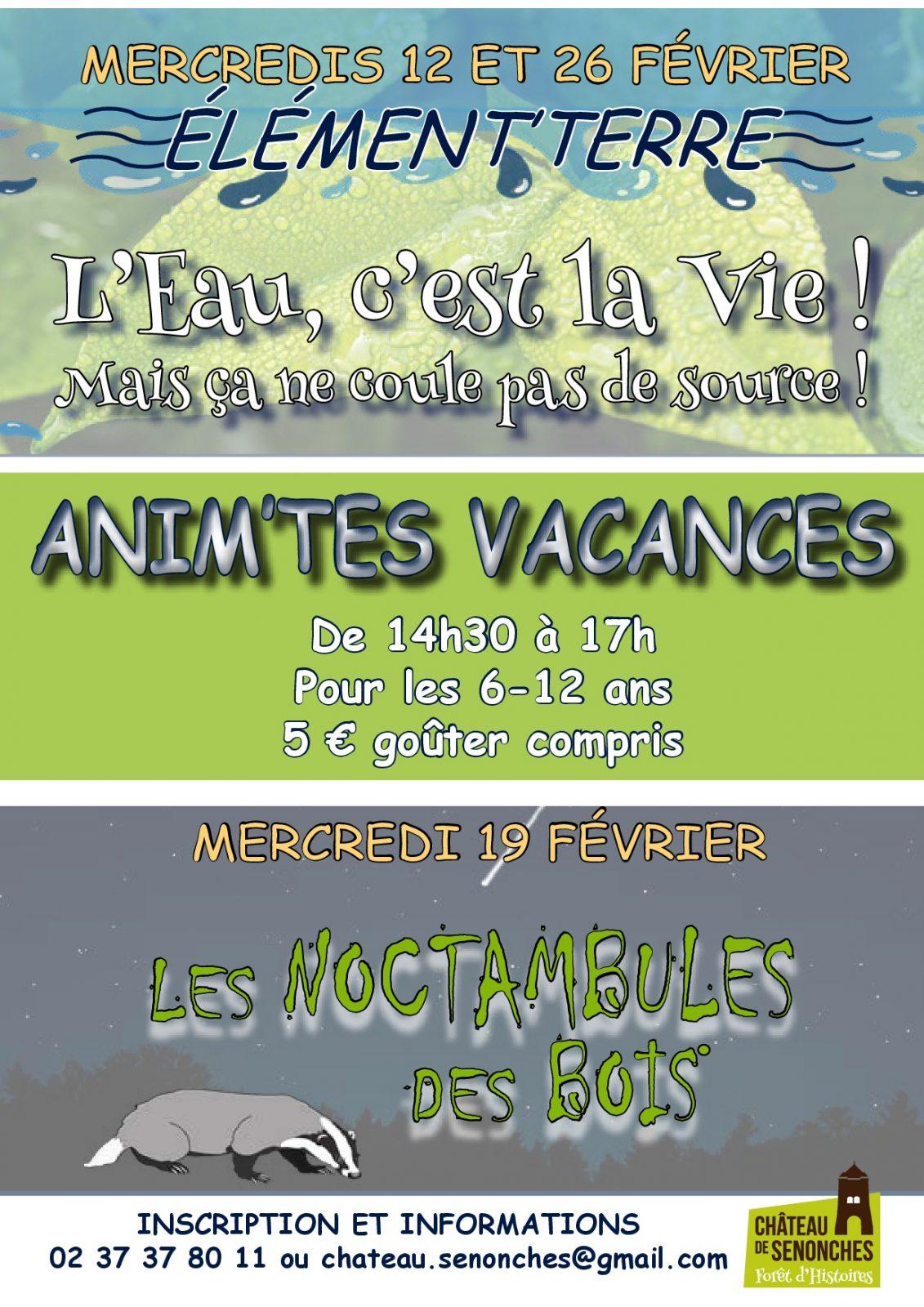Anim'Tes Vacances «Les Noctambules des Bois» à SENONCHES © mylène durantel