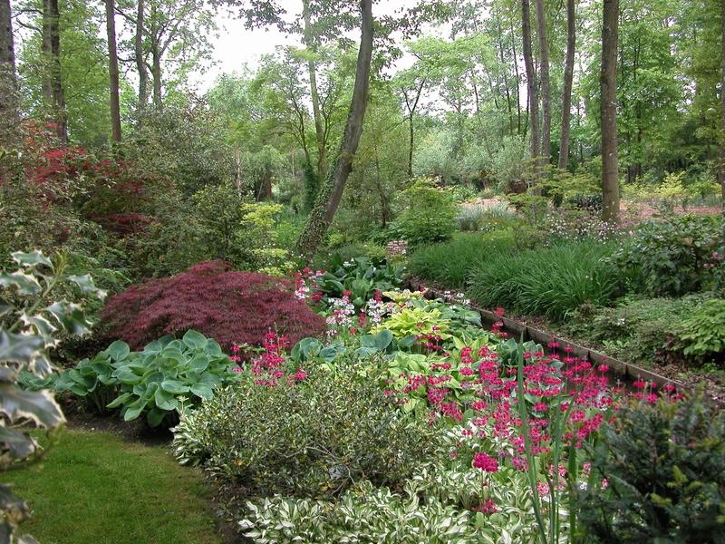 Jardin Arboretum d'Ilex à MEUNG-SUR-LOIRE ©  Jardin Arboretum d'Ilex - M. Paris