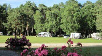 Camping les grands pins à velles