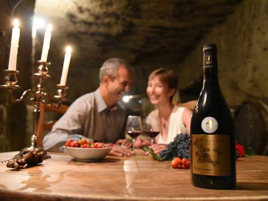 Visites insolites des vignes aux troglos à SAINT-NICOLAS-DE-BOURGUEIL © cave Drussé