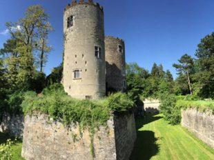 Château de Cinq-Mars et Parc à CINQ-MARS-LA-PILE - 11  © Château de Cinq Mars