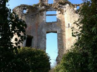 Château de Vaujours à CHATEAU-LA-VALLIERE - 4