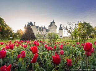Château et Jardins du Rivau à LEMERE - 2  © Jean-Christophe COUTAND