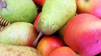 Corbeille de pommes et de poires