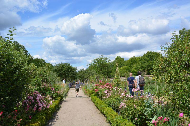 Visite parc, jardin et potager du château de la bussière à LA BUSSIERE © C.Cardon Tourisme Loiret