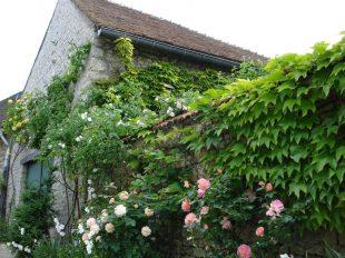 Découverte de fleurissement de Yèvre-le-Châtel à YEVRE-LA-VILLE - 3  © OTGP