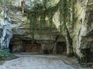 Le Clos des Quarterons à SAINT-NICOLAS-DE-BOURGUEIL - 7  © Jean Yves Bardin
