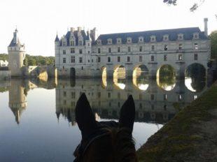 Ecuries la Clé des Champs à FRANCUEIL - 2  © Ecuries la clé des champs