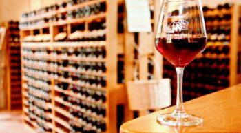 Fête des Vins de Bourgueil à Tours