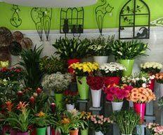 Fleurs et créations