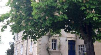 HLO-la-rumillette-credit-2019–18-