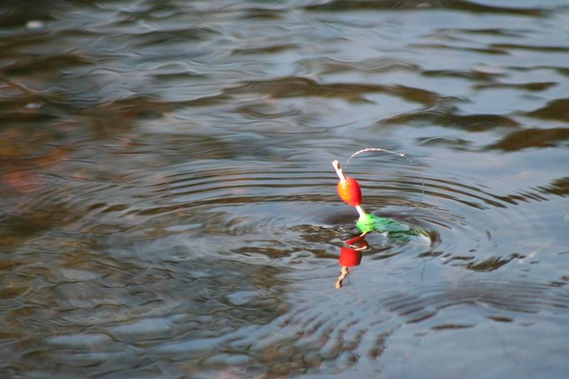 Pêche au Lac de la Roche Bat l'Aigue à BADECON-LE-PIN © ADTI