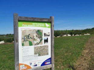 Sentier de découverte des carrières de Prasville à PRASVILLE - 2  © morizea
