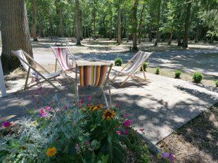 Camping de la Forêt à MONTARGIS - 3  © Terrasse accueil