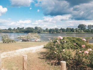 Office de Tourisme des Terres du Val de Loire – Bureau de Meung-sur-Loire à MEUNG-SUR-LOIRE - 3  © OT Val des Mauves