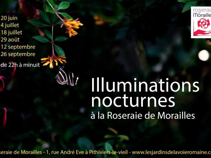 Illuminations nocturnes à la Roseraie de Morailles à PITHIVIERS-LE-VIEIL © Michelle - stock.adobe.com