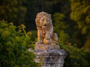 Château de Valmer – Vins et Jardins à CHANCAY - 9  © Léonard-de-Serres