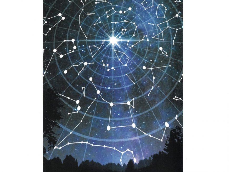 La Toile Étoilée à PAUCOURT © Maison de la Forêt