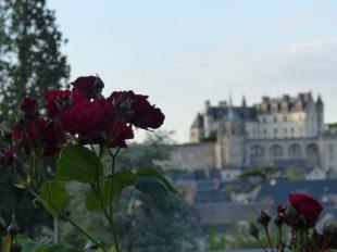 La vie en rose à AMBOISE - 9  © La vie en rose