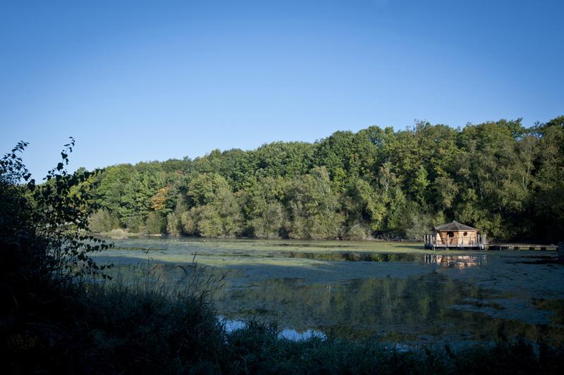Les Cabanes du Bois-Landry à CHAMPROND-EN-GATINE - 18  © CDT 28