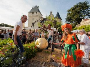 Château et Jardins du Rivau à LEMERE - 4