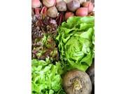 Mangeons mieux ! Atelier cuisine végétarienne à NOGENT-LE-ROTROU © PNRP