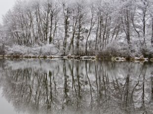 Gite du canal de Briare Les Fichus à OUZOUER-SUR-TREZEE - 6  © Réjane Odry